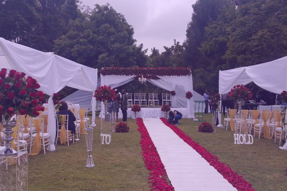 Weddings & Weddings - Sunflower
